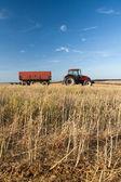 Agricoltura - trattore — Foto Stock