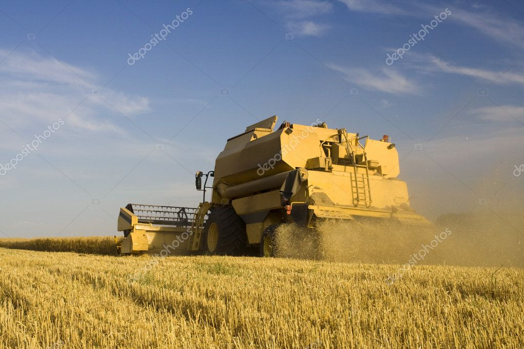 Agriculture - Combine (harvester) on the field — Stock Photo #5669198