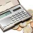 Stock Photo: Money calculating concept
