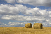 农业-干草堆 — 图库照片