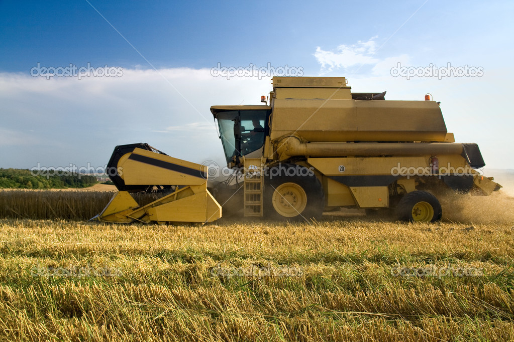 Agriculture - Combine (harvester) on the field — Stock Photo #5866239