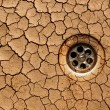 Dry ground - drought — Stok fotoğraf