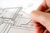 Arquitecto con blueprint — Foto de Stock