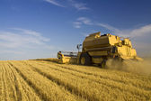 Agriculture - Combine — Stockfoto