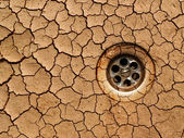 Dry ground - drought — 图库照片