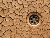 Sécher au sol - sécheresse — Photo