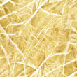 Abstract luxury gold background - Stock Photo