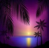 Beautiful tropical sunset beach — Stock Vector