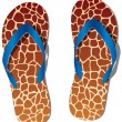 Pair of flip flops - Stock Vector
