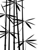Black and white bamboo — Stock Vector