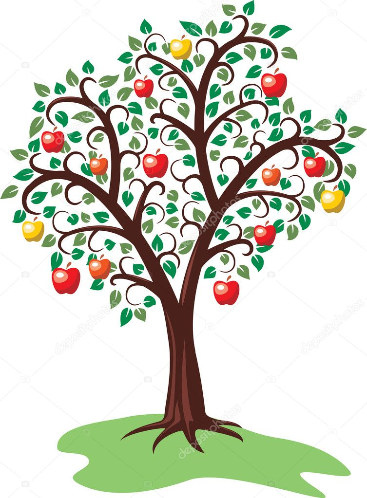 Tree Plan Vector Vector Design of Apple Tree