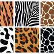 Animal skin textures — Stock Vector #6654648