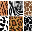 Stock Vector: Animal skin textures