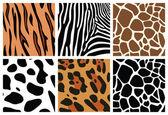 Animal skin textures — Stock Vector