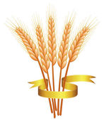 Wheat ears and golden ribbon — Stock Vector