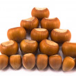 Hazelnuts of different sizes — Stock Photo