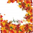 Autumn leaf, vector background — Stock Vector #5649665