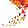 Royalty-Free Stock Vector Image: Autumn leaves