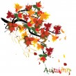 Vector de stock : Autumn painted card