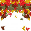 Autumn leaves, background — Stock Vector