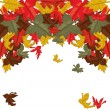 Autumn leaves, background — Stock Vector #5649746