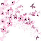 Elegant spring background decorated with cherry blossoms — Stock Vector