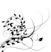 Vector illustration of swirling flourishes decorative Floral — 图库矢量图片