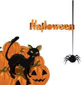 Halloween card with kitten and pumpkin — Stock Vector