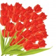 Bunch of red tulips. vector illustration — Stock Vector