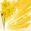 Dafodills. Vector illustration — Stockvektor #6013710