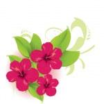 tropikalny kwiat — Wektor stockowy