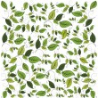Flower seamless pattern with leaf, element for design, vector il — Stock Vector #6014091
