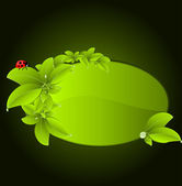 Vector green leaf and ladybug with space for your text — Stock Vector