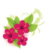 Tropical flower — Stock Vector