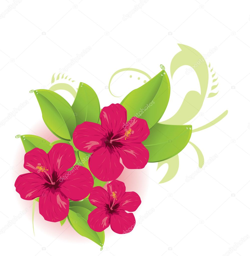 Tropical Flower Line Drawing : Tropical flower — stock vector lindwa