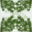 Christmas tree branches vector background — Stock Vector