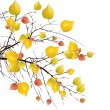 Autumn tree background — Vector de stock #6601478