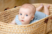Surprised Little boy lying in wicker basket — Stock Photo