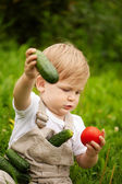 Boy and vegetables — Stock Photo
