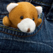 Royalty-Free Stock Photo: Little toy bear looking out from jeans pocket