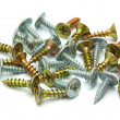 Close-up of wood screw on white background — Stock Photo