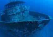 海の底で — ストック写真