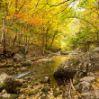 Landscape with mountain river in autumn forest — Stock Photo #5734747