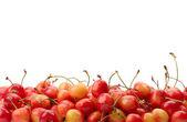 Ripe cherry isolated on white — Zdjęcie stockowe