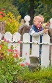 Portrait of Happy Little boy playing in garden — Stock Photo