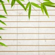 Rice paper background with bamboo leaves - Stock Photo