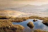Ireland west coast — Stock Photo