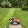 Lawnmower cutting grass — Stock fotografie