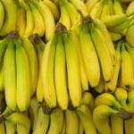 Bunches of bananas — Stock Photo