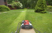 Lawnmower cutting grass — Stock Photo